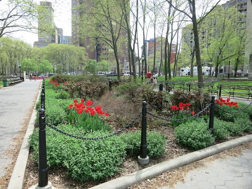 cadman plaza park brooklyn nyc