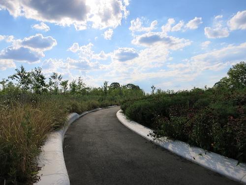 hammock grove governors island nyc