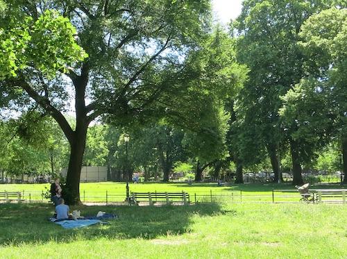 herbert von king park bedford-stuyvesant brooklyn nyc new york city parks