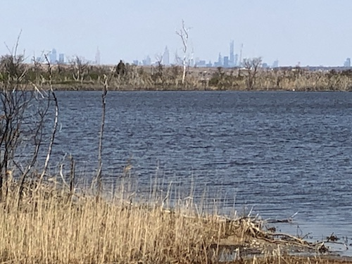 jamaica bay wildlife refuge gateway national recreation area queens new york city parks