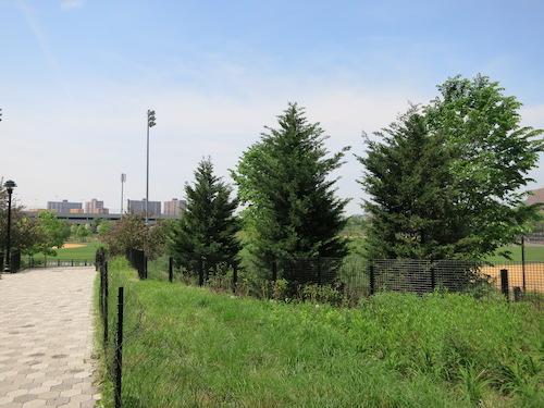 macombs dam park yankee stadium bronx nyc
