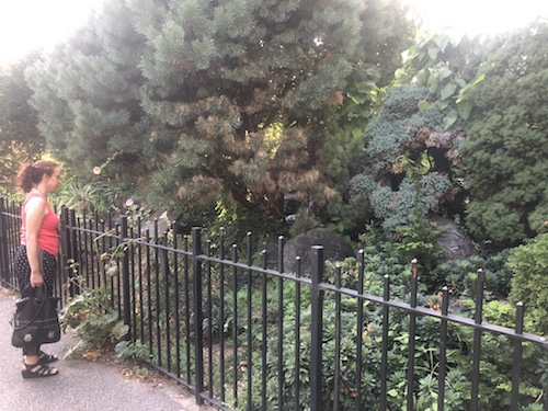 narrows botanical gardens bay ridge brooklyn nyc
