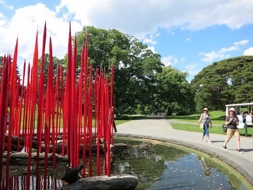 dale chihuly nybg new york botanical garden bronx nyc