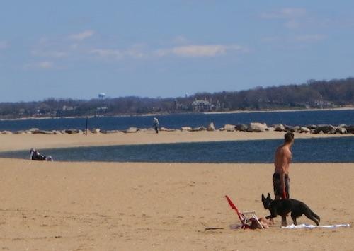 orchard beach hunter island pelham bay bronx new york city parks