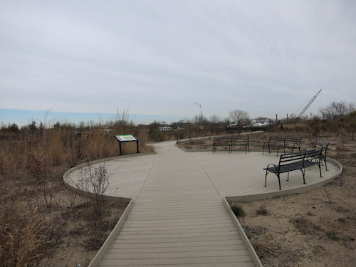 paerdegat basin ecology park brooklyn nyc
