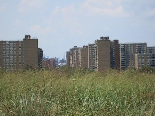 starrett city shirley chisholm state park brooklyn new york city parks