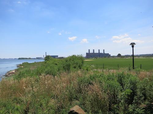 randalls island wards island bronx kill salt marsh nyc
