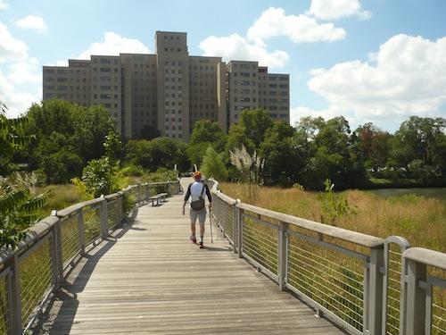 wards island park