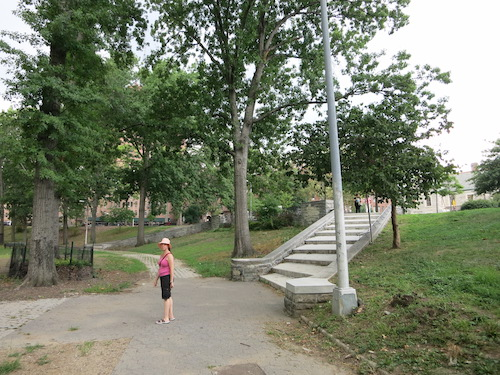williamsbridge oval norwood bronx nyc