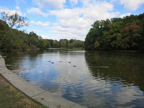willowbrook park willowbrook lake staten island greenbelt nyc